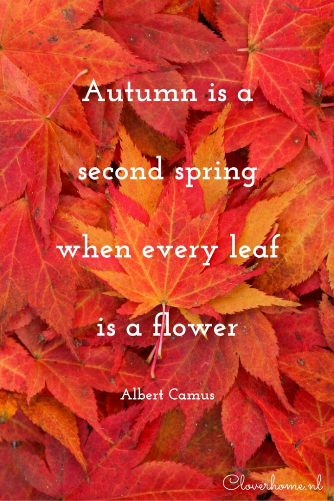 A quote to start the week: Autumn is a second spring - Cloverhome