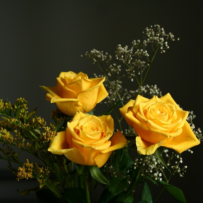 The language of flowers: yellow roses - Cloverhome.nl