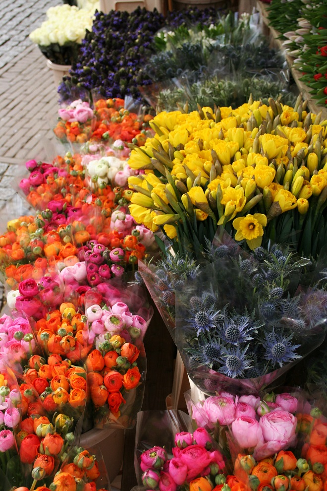 Ranunculus, daffodils and thistle at the flower market