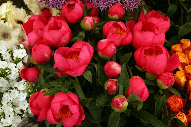 Market days June: summer flowers, peonies - Cloverhome.nl