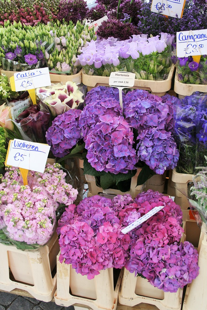 Market days June: summer flowers, purple flowers - Cloverhome.nl
