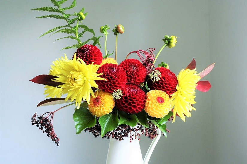 How to make a dahlia bouquet, fresh from the garden.
