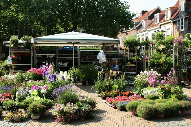 Hold on to summer: the flowermarket - Cloverhome.nl