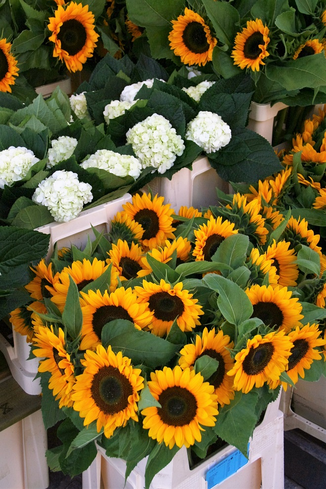 Hold on to summer: sunflowers - Cloverhome.nl