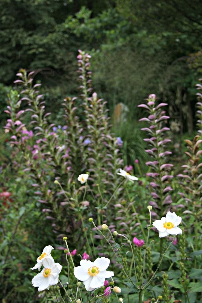 Garden 'Het Bergje' - Cloverhome.nl