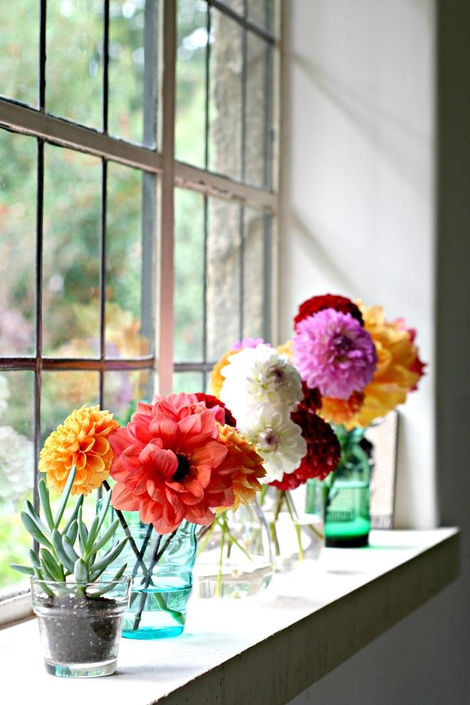 Urban Jungle Bloggers: Plants & Flowers - Cloverhome.nl