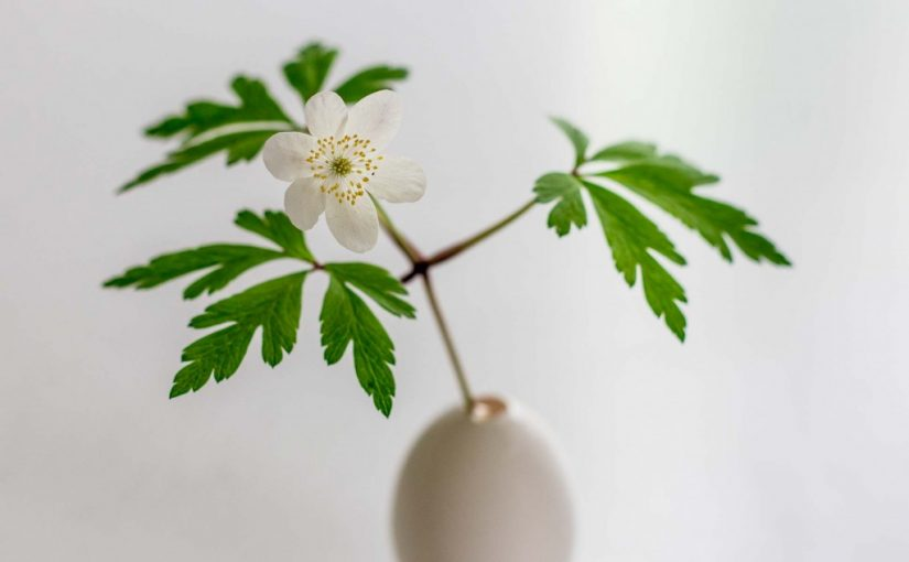Simple Easter decoration: delicate egg vases