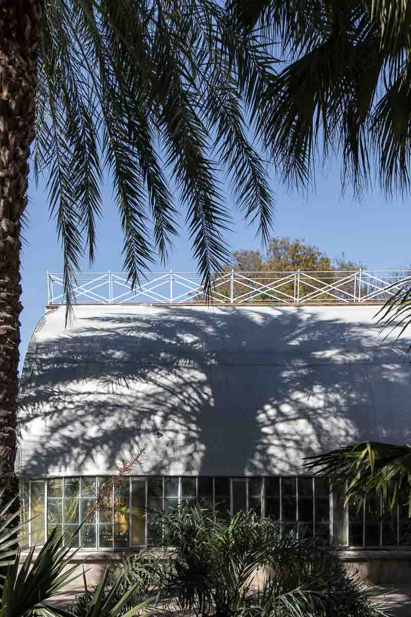 Enjoy the tranquil and serene atmosphere in the Botanical Garden of Valencia. Visit the greenhouses filled with lush, healthy plants - Cloverhome.nl