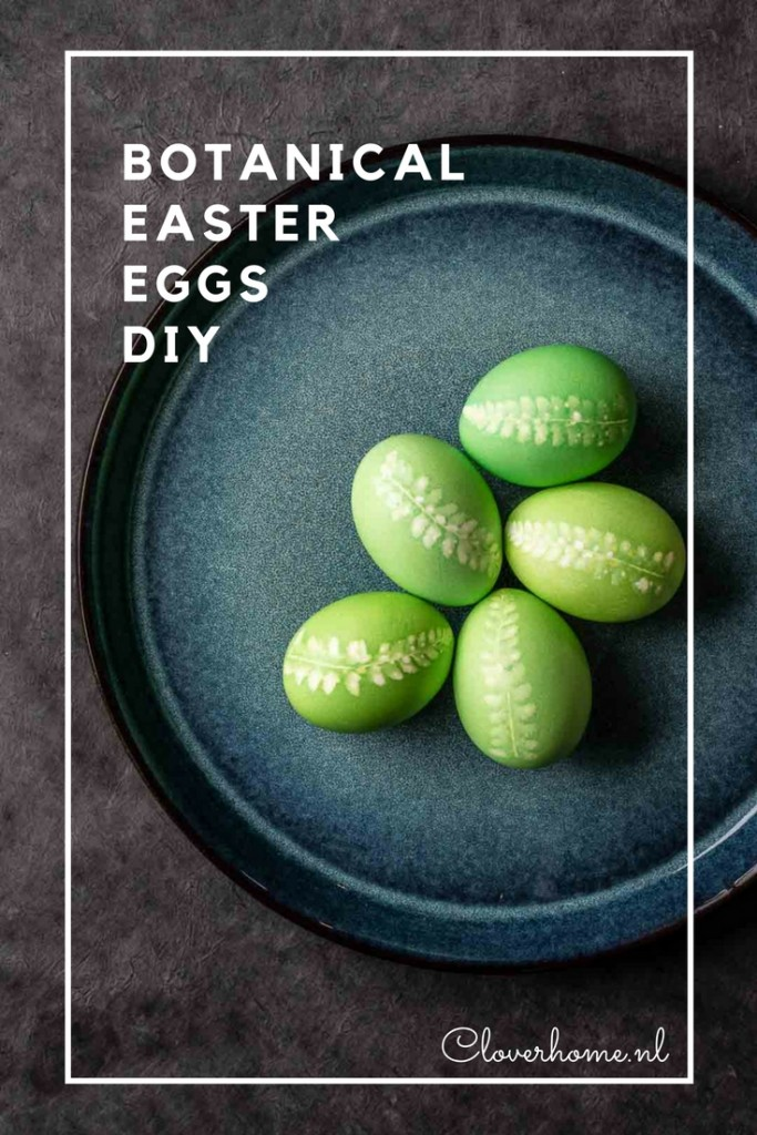 These botanical Easter eggs are an easy and inexpensive Easter decoration. All you need are eggs, egg dye and some leaves from your garden. Use fern leaves or flowers as an imprint - Cloverhome.nl