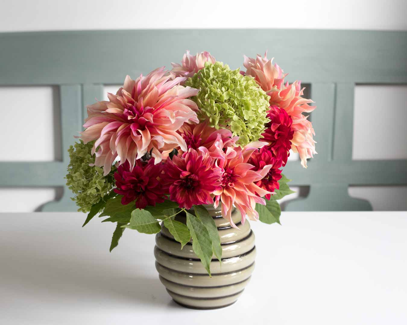Flowering its heart out, dahlia Labyrinth is stealing the show. With beautiful peach-pink flowers on dark stems, this dahlia is a flower growers dream - Cloverhome.nl
