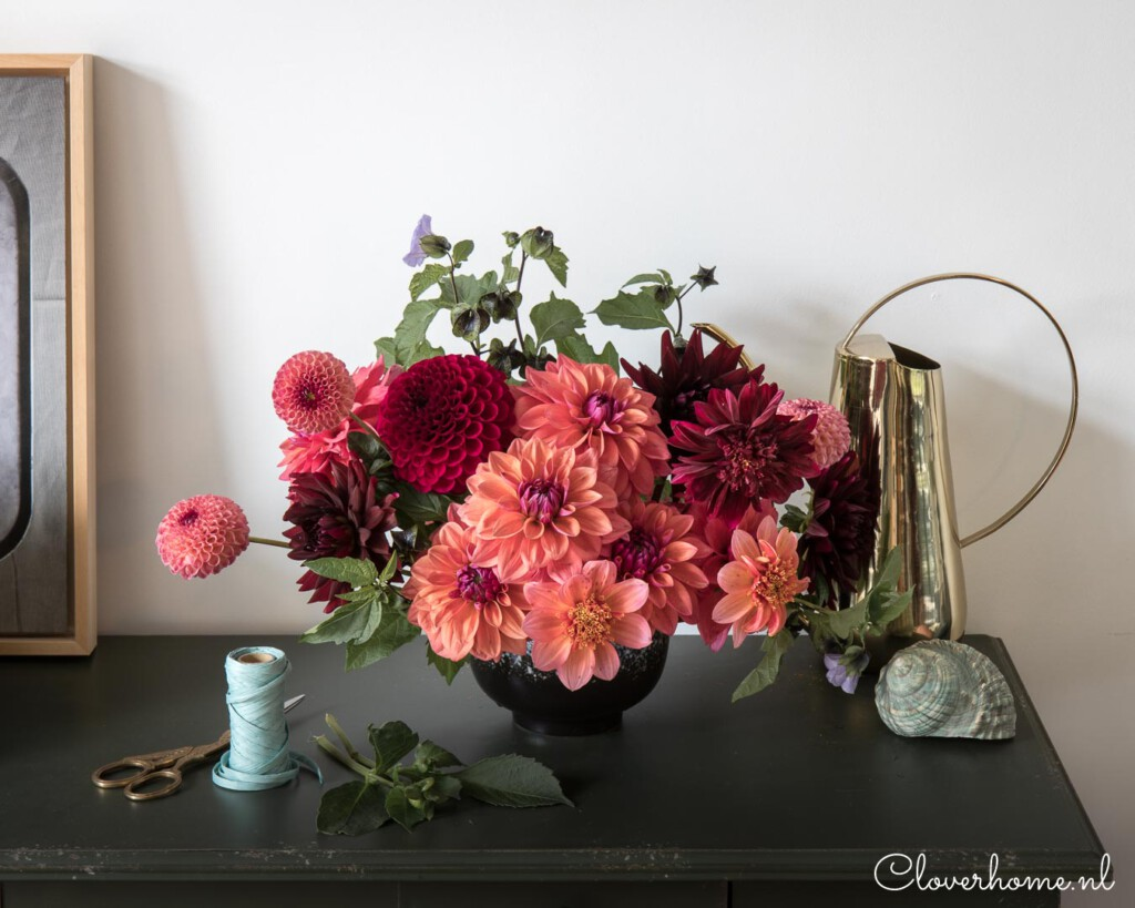 Favourite dahlia varieties that look good in both your garden as well as the vase - Cloverhome.nl