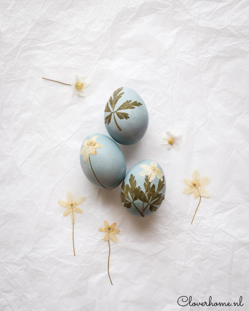 These natural dye Easter eggs are fun to make. Use fruits and vegetables to dye the eggs and pressed flowers and leaves to decorate them - Cloverhome.nl